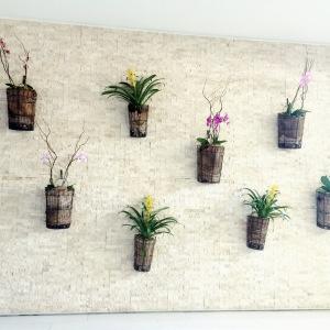 ananispaflowers