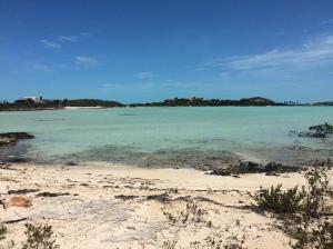 turtletailsand