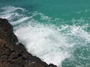 turtletailwwatersurge