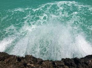 turtletailwatersurge2